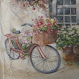 12115. Велосипед. 10 шт., 25 руб/шт
