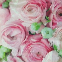 12209. Розовые розы
