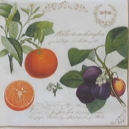 12215. Фрукты и ягоды на ветках