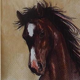 12374. Лошадь