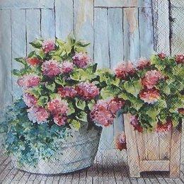 12408. Дачные цветы. 5 шт., 23 руб/шт