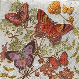 12432. Бабочки на цветах. Punch Studio. 5 шт., 21 руб/шт