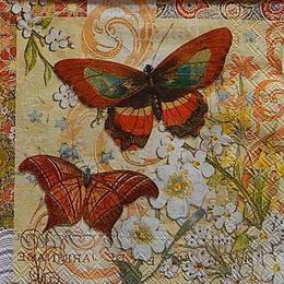 12434. Две большие бабочки. Punch Studio