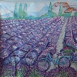 12504. Лавандовое поле