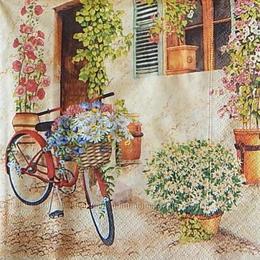 12553. Велосипед и цветы