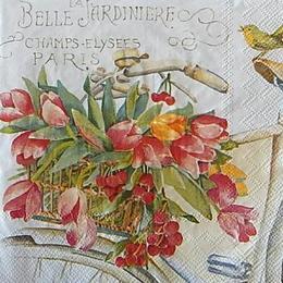 12560. Тюльпаны в корзине велосипеда. 5 шт., 20 руб/шт