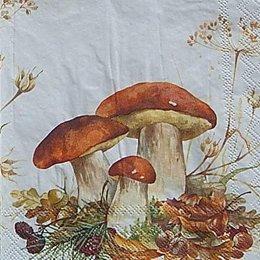 12593. Белые грибы. 5 шт., 20 руб/шт