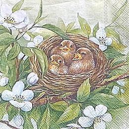 12597. Птенцы в гнезде