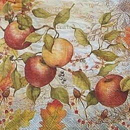 12631. Яблоневый сад