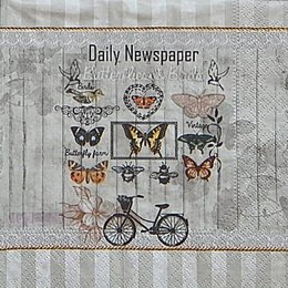 12633. Бабочки и велосипед