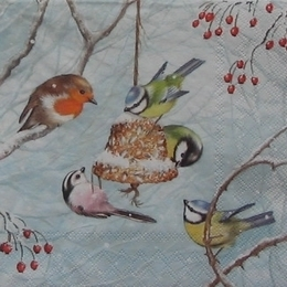 12677. Птички и кормушка