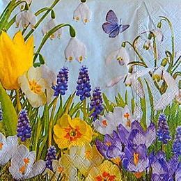 12783. Полевые цветы на голубом