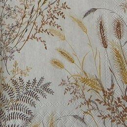 12878. Колосья пшеницы