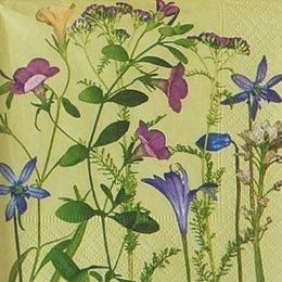12921. Луговые цветы. 5  шт.,14 руб/шт
