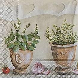 20017. Травы в горшках