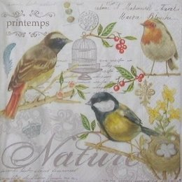 20066. Птички. 15 шт., 12 руб/шт