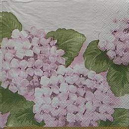 20076. Розовая гортензия. 10 шт., 15 руб/шт