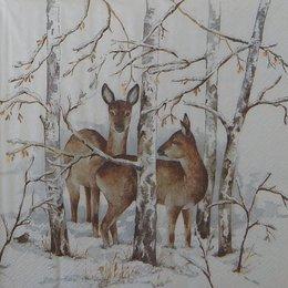 20099. Косули в лесу