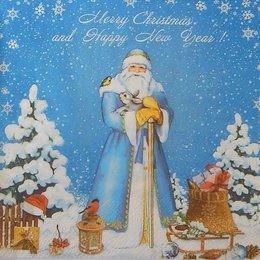 20105. Дед Мороз в лесу