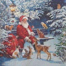 20116. Санта Клаус  и звери. 5  шт., 24 руб/шт