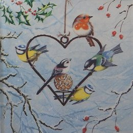 20122. Птицы и сердце