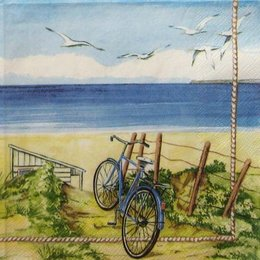 12837. Велосипед