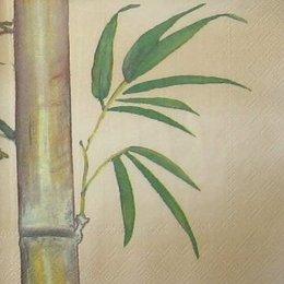 4201.Бамбук на бежевом. 5 шт., 12 руб/шт