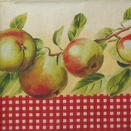 4305. Яблоки и клетка.