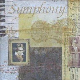 4640. Симфония Шопена