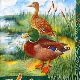 4701. Утки на болоте