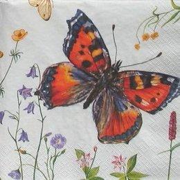 4825. Разные бабочки. 5 шт., 17 руб/шт