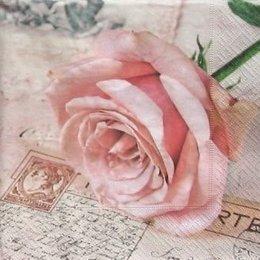 4828. Роза на открытке.