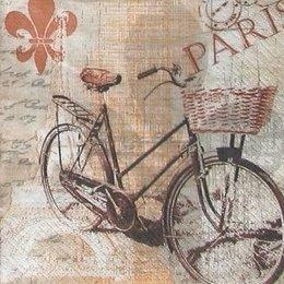 4877. Старый велосипед.