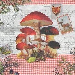 4938. Винтажные грибы.