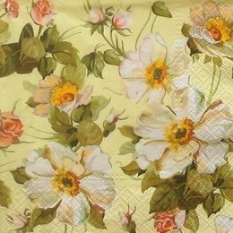 4987. Белые цветочки