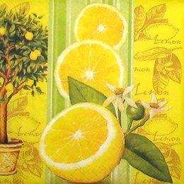 9077. Лимон и лимонное дерево. 10 шт., 6,5 руб/шт