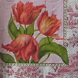 9240. Тюльпаны с каймой. 10 шт., 8 руб/шт