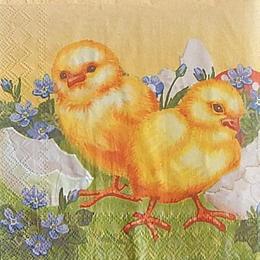 9895. Яйца и цыплята. 5 шт., 10 руб/шт