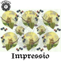 15876. Декупажная карта Impressio, плотность 45 г/м2