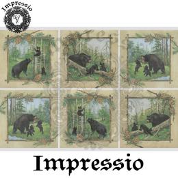 16231. Декупажная карта Impressio, плотность 45 г/м2