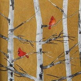12341. Птицы на ветках берез