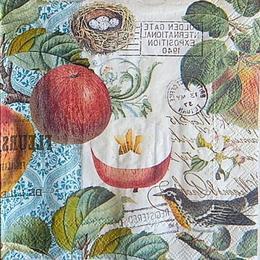12499. Яблоки и птица