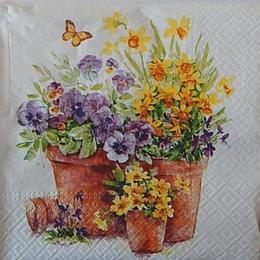12536. Цветы в плошках. 5 шт., 17 руб/шт