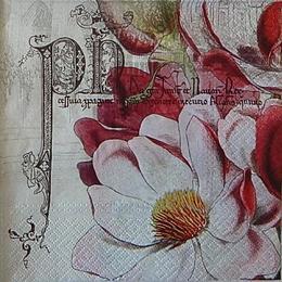 12539. Красно-розовые цветы на сером