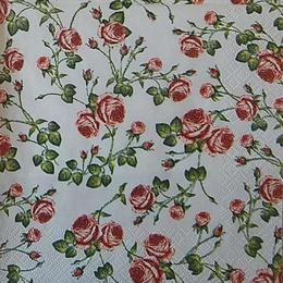 12543. Красные розы на белом
