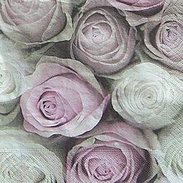 12608. Белые и розовые розы