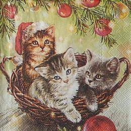 12701. Котята в корзинке