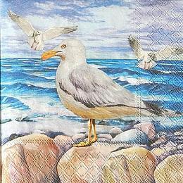 12943. Чайки у моря