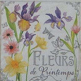20064. Весенние цветы