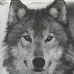 20083. Волк. 5 шт., 20 руб/шт